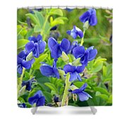 Blue Beauties Shower Curtain