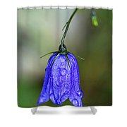 Blue Bell Shower Curtain
