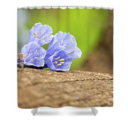 Blue Bells 2 Shower Curtain