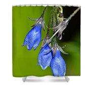 Blue Bells Are Ringing Shower Curtain
