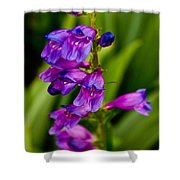 Blue Bells Wild Flower Shower Curtain