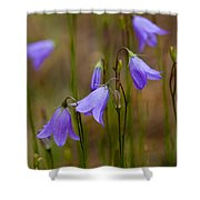 Blue Bells Wyoming Shower Curtain
