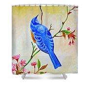 Blue Bird On Cherry Blossom  Shower Curtain