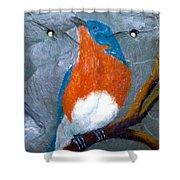Blue Bird On Slate Shower Curtain