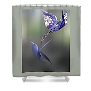 Blue Birds Over Shower Curtain
