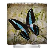 Blue Black Butterfly Dreams Shower Curtain