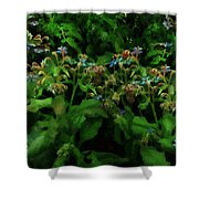 Blue Blossoms By Moonlight Shower Curtain