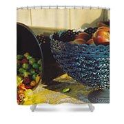 Blue Bowl Shower Curtain