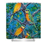 Blue Breasted Bee Eater Shower Curtain