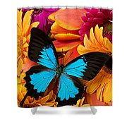Blue Butterfly On Brightly Colored Flowers Shower Curtain