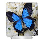 Blue Butterfly On White Roses Shower Curtain