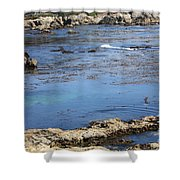 Blue California Bay Shower Curtain