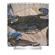 Blue Claw Crab Shower Curtain