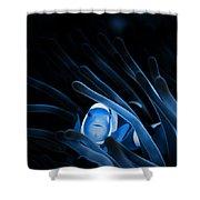Blue Clownfish Big Size 15x11 - Beach House Art Shower Curtain