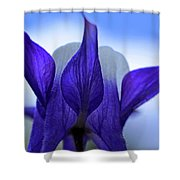 Blue Columbine I Shower Curtain