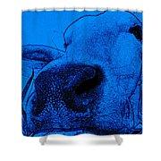 Blue Cow Shower Curtain