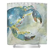 Blue Crab. Shower Curtain