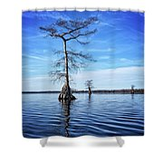 Blue Cypress Shower Curtain