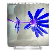 Blue Daisy Delight Shower Curtain