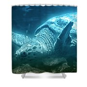 Blue Depths Sea Turtle Shower Curtain