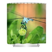 Blue Dragonfly And Bud Shower Curtain