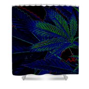 Blue Dream Shower Curtain by Savannah Fonner