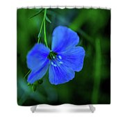 Blue Dreams 2 Shower Curtain by Shiela Kowing