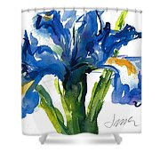 Blue Dutch Iris For Kappa Kappa Gamma Shower Curtain