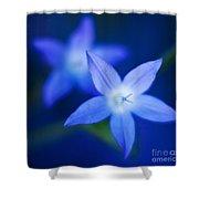 Blue Etoile Shower Curtain