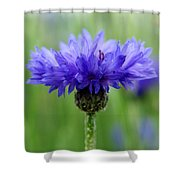 Blue Explosion Shower Curtain
