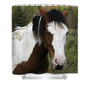 Blue Eyed Beauty Shower Curtain