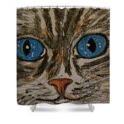 Blue Eyed Tiger Cat Shower Curtain