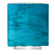 Blue Flash Shower Curtain