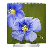 Blue Flax #2 Shower Curtain