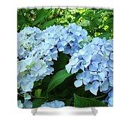 Blue Floral Hydrangea Flower Summer Garden Basle Troutman Shower Curtain