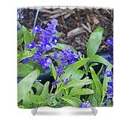 Blue Flower B6 Shower Curtain