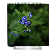 Blue Flower In Spring Shower Curtain
