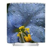 Blue Spring Flower Shower Curtain