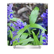 Blue Flowers B5 Shower Curtain