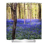 Blue Forest In Shadow Shower Curtain