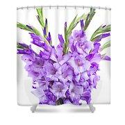 Blue  Gladiolus Shower Curtain