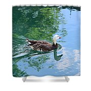 Blue Goose-1 Shower Curtain