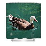 Blue Goose-3 Shower Curtain