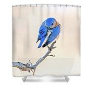 Blue Grace Shower Curtain