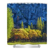 Blue Granite Shower Curtain