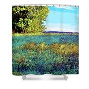 Blue Grass Sunny Day Shower Curtain