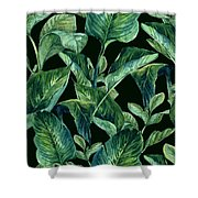 Blue Green Watercolor Tropical Leaves Shower Curtain