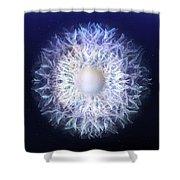 Blue Haze Petals Shower Curtain