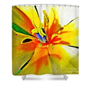 Blue Heart Of The Tulip Shower Curtain