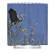 Blue Heron 35 Shower Curtain by Roger Snyder